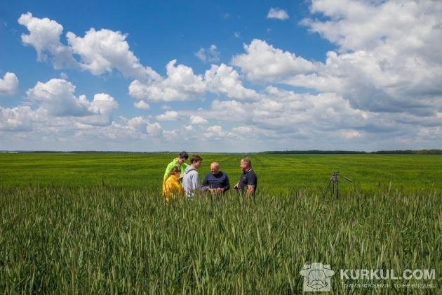 Агроекспедитори та агроном у полі господарства «Маяк»
