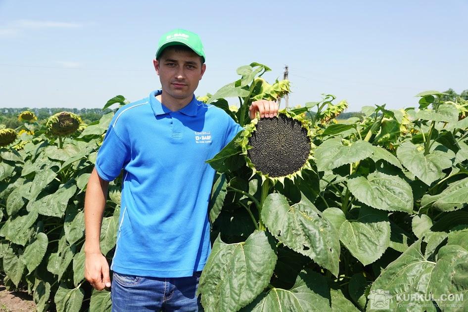 Андрій Сулима, регіональний менеджер зі збуту в Кіровоградській і Миколаївській областях компанії BASF
