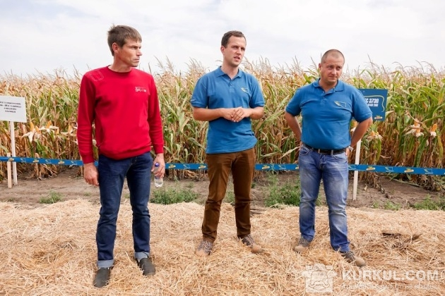 Демонстрація результатів у полі кукурудзи