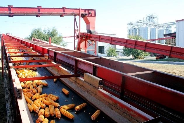 Виробничий процес у «Євраліс Семенс Україна»