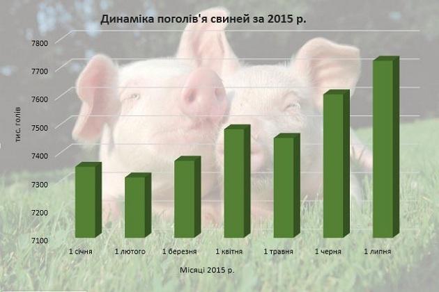 Динаміка поголів'я свиней