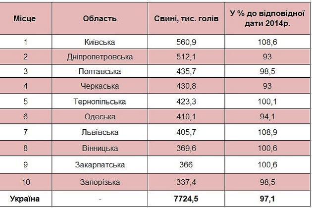 Зведена таблиця по поголів'ю свиней