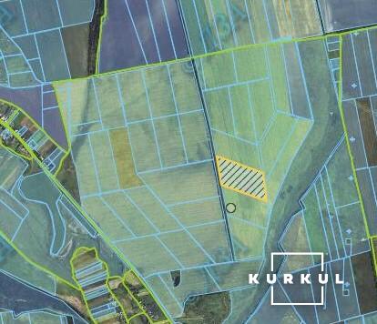 Спірна земельна ділянка на кадастровій карті поля